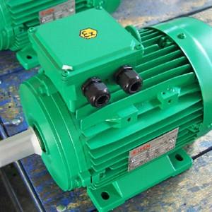 Motori elettrici ATEX